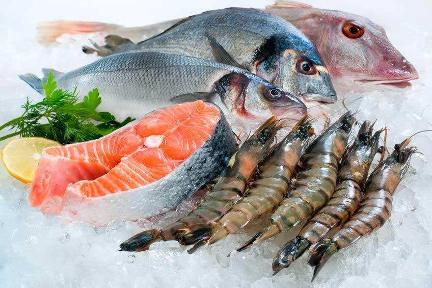 xuất khẩu thủy sản vào EU